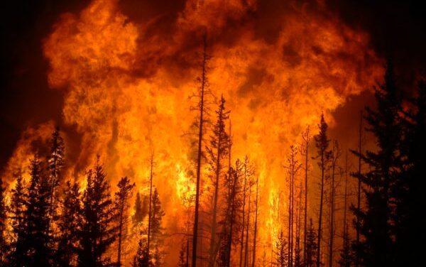 Fires In Elk Grove & Surrounding Areas