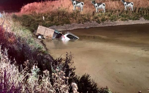 DUI Driver Crashes Into Manure Pond Near Elk Grove On Memorial Day Weekend