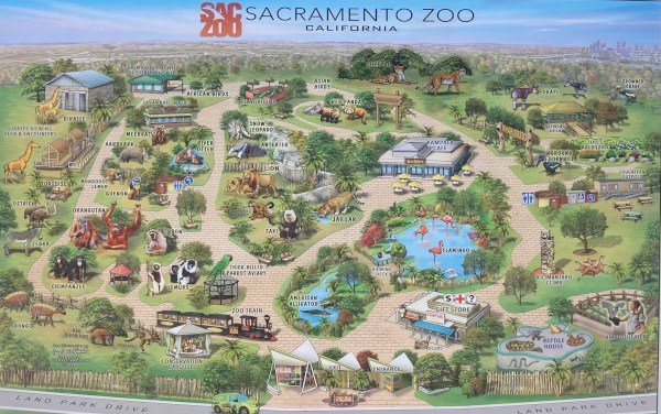 Could Elk Grove Soon Be Home To The Sacramento Zoo?
