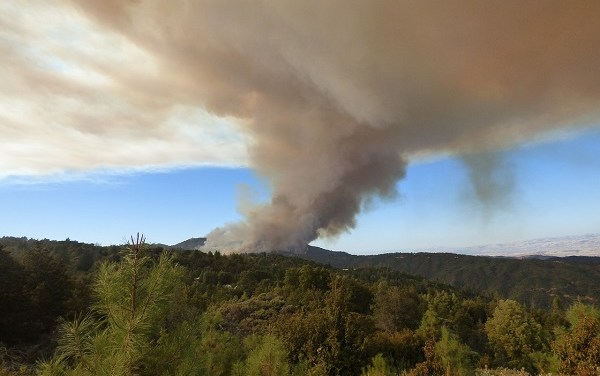 California Wildfire Season: Protecting Your Health From Poor Air Quality