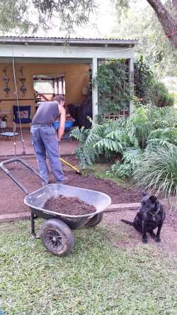 Deez supervising the G.O. shift more dirt...