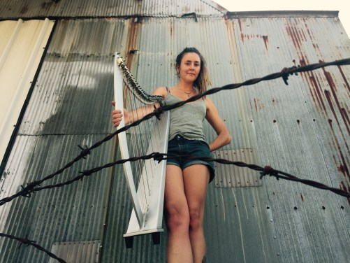Harps and barbed wire