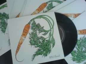 Carrot screen print. MW Bewick EP Illustration and artwork by Ella Johnston
