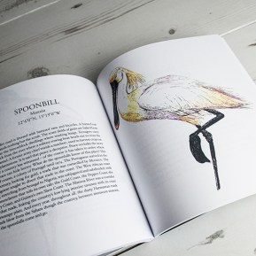 Spoonbill illustration, The Migrant Waders, Published by Dunlin Press