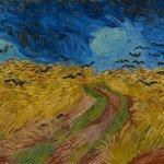 Korenveld met kraaien naar Van Gogh