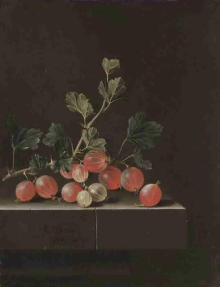 Schilderij van COORTE, Adriaen, Kruisbessen op een tafel, 1701