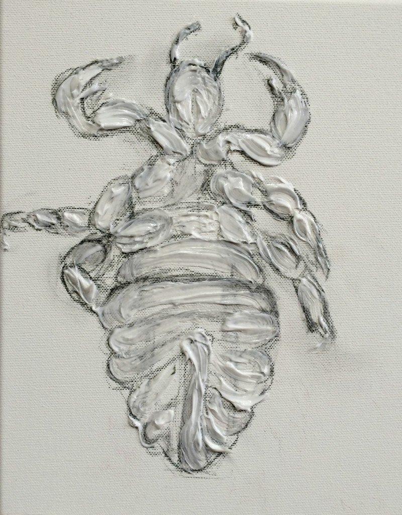 Een fossiel van een luis. Cochenille luis met gel