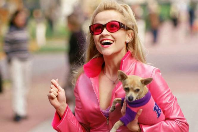Una Rubia Muy Legal (Legally Blonde)