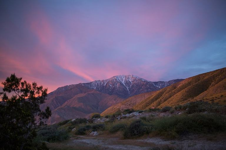 Sunrise, snow capped mountains, desert superbloom by photographer Ella Sophie