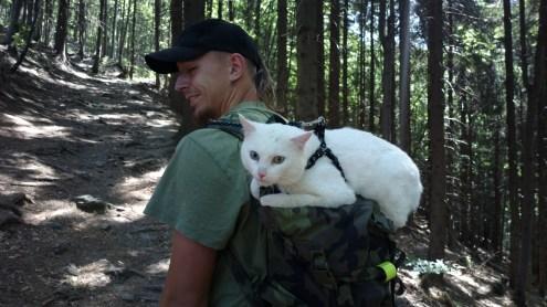 Our cat - Filip Bělouš Mňoukátor 3000