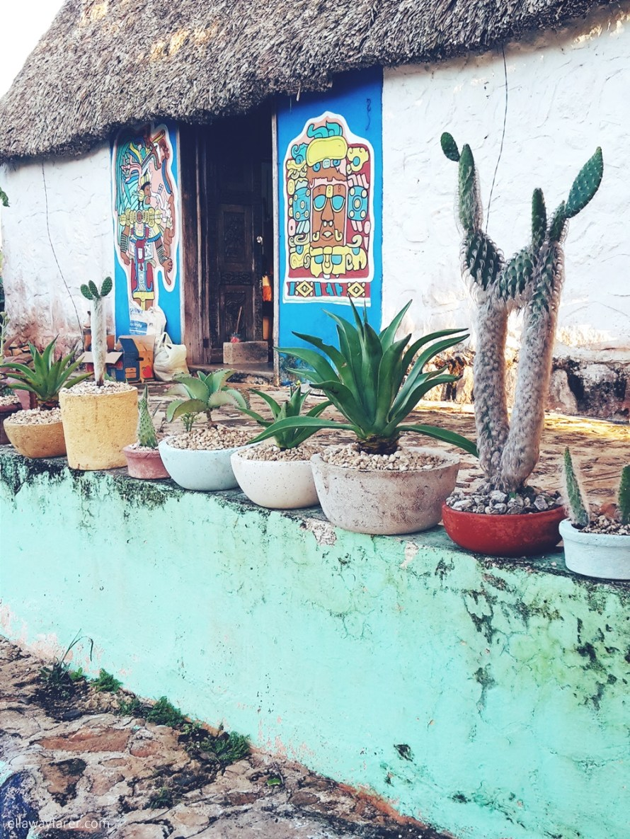 The Perfect Mexican Garden