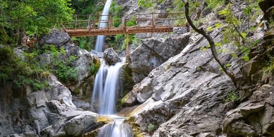 Το φυσικό μεταλλικό νερό ΘΕΟΝΗ έχει eco-friendly DNA και δεν σταματά να μας το αποδεικνύει Το Φυσικό Μεταλλικό Νερό ΘΕΟΝΗ ανακοινώνει την είσοδό του στη χάρτινη συσκευασία.