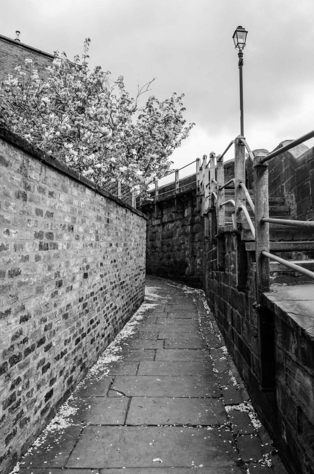 Rundgang auf der Stadtmauer von Chester