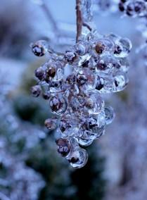 winter-507976_1280