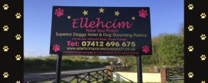 dog-boarding kennels teesside