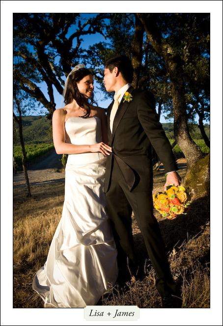 BR Cohn winery wedding