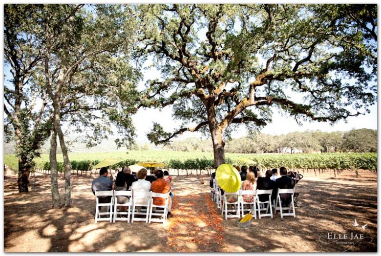 BR Cohn Fox Hill Wedding