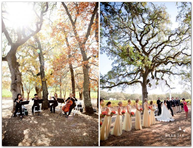BR Cohn Winery, Fox Hill Wedding