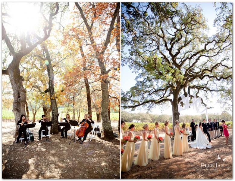 BR Cohn Wedding_04