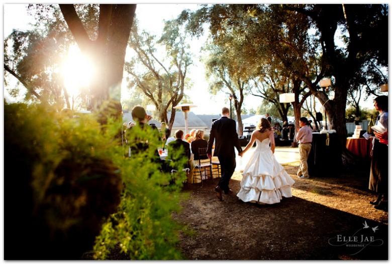 BR Cohn Wedding_10