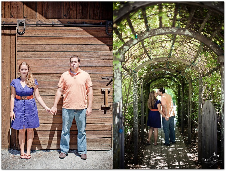Allison & Andrew, Engagement Session