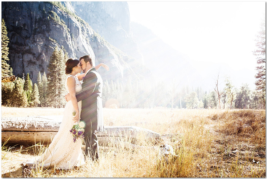 Kim & Sean's gorgeous Yosemite Wedding