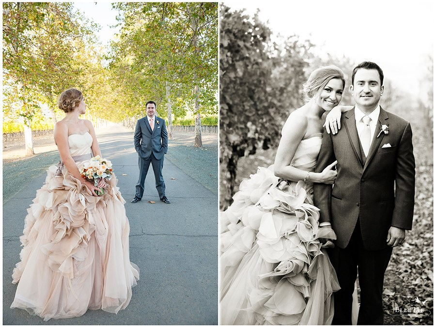 Cassie and Morgan,Beaulieu Garden Napa Wedding