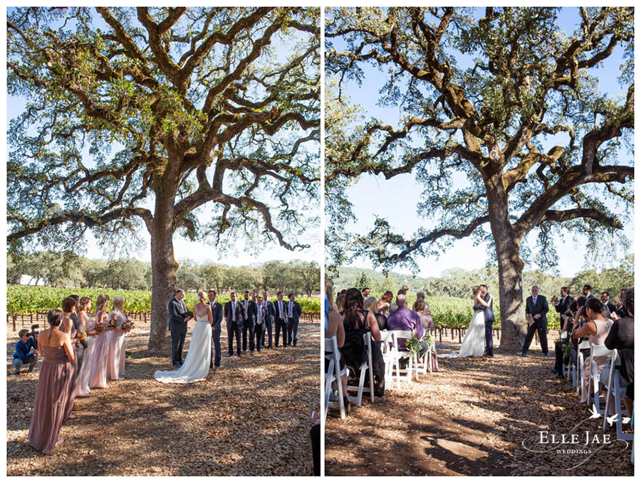 BR Cohn Sonoma Wedding Photographer 10