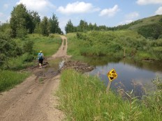The beavers adjusted the trail here