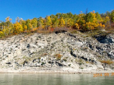Fall colours from the river