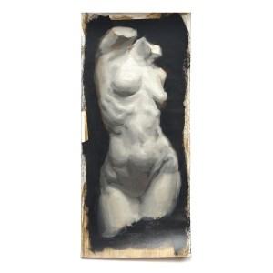 Venus Torso Study