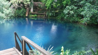 The bluest of blue at Jackie's bluehole