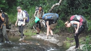 We left the last leeches at the border of the jungle
