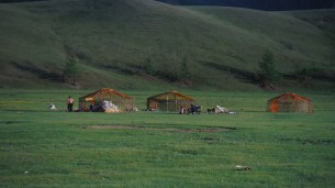 Mongolians making their summer camp in Terelj