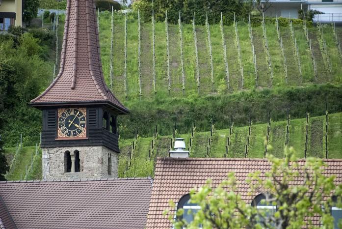 Motier Vully church vines_sm_10514