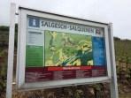 vineyards Salgesch Valais5_020515