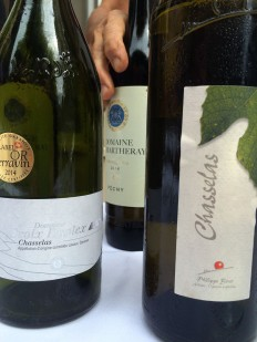 Three lovely Chasselas wines from 3 Vaud wineries, tasted this week: from Vogel/Maison Duplex, Martheray in Féchy and Bovet in Givrins