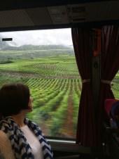 Mondial des Pinots judges trip rain_160815