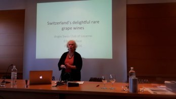 Swiss rare wines presentation in Locarno