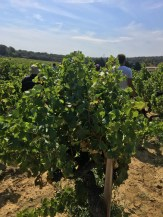 DomaineCharvin2_200916