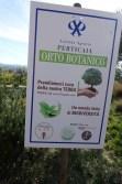 plants winery Italy Perticaia-261017