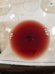 wine red Italy Montefalco Rosso Perticaia_261017