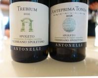 wine white Italy Montefalco Trebbiano Spoletino Antonelli_261017