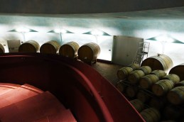 winery Italy Montefalco Lunelli Carapace23_271017