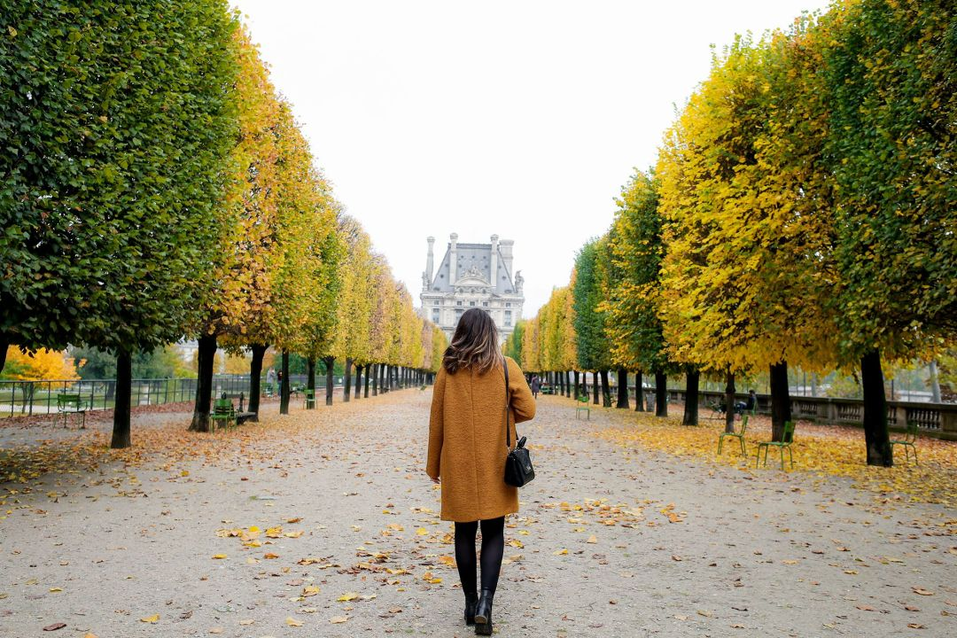 automne-paris-tuileries4