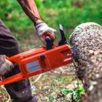 best electric chainsaw, top rated chainsaws