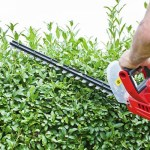 best hedge trimmer, cordless hedge trimmer