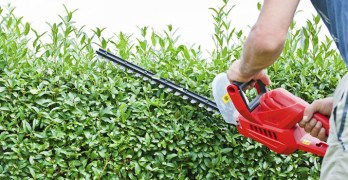 best hedge trimmer, cordless hedge trimmer