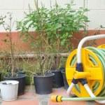 Best Hose Reel, garden hose with reel