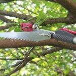best tree pruner, long reach tree pruner